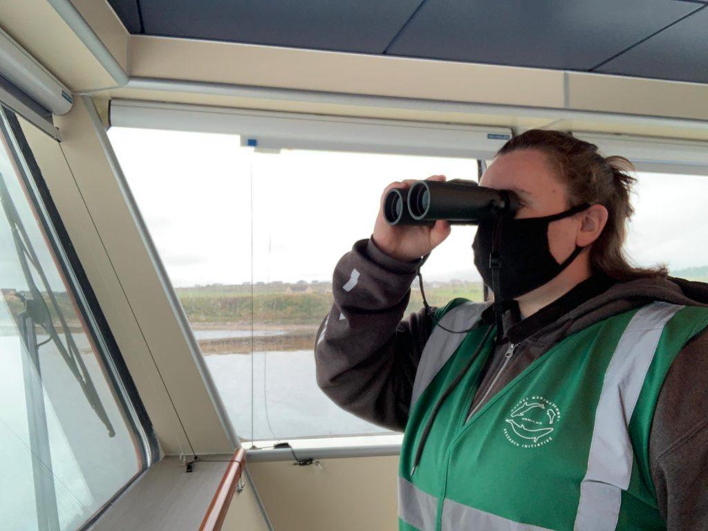 Sea mammal watching from bridge of MV Alfred